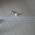 """Latexballonger 12"""" (30cm) med er design image"""